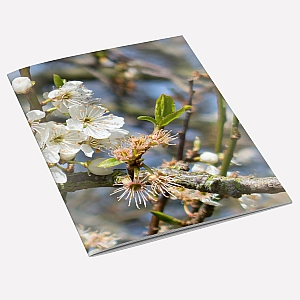 Hawthorn Notebook
