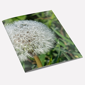 Dandelion Dew A6 Notebook