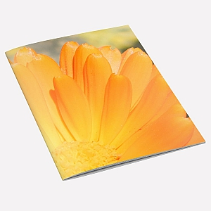 Marigold Notebook A6