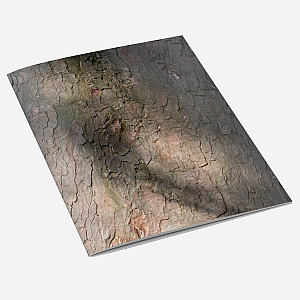 Sycamore Bark Notebook