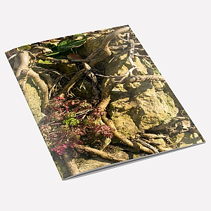Tangled Wall Notebook