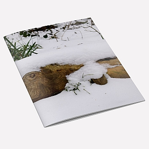 Snow Fish Notebook