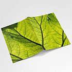 Leaf Notebook